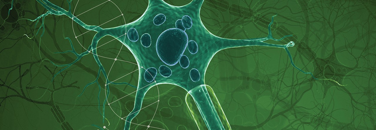 Report Offers Hope, Outlines 537 New Drugs in Development for Neurological Disorders